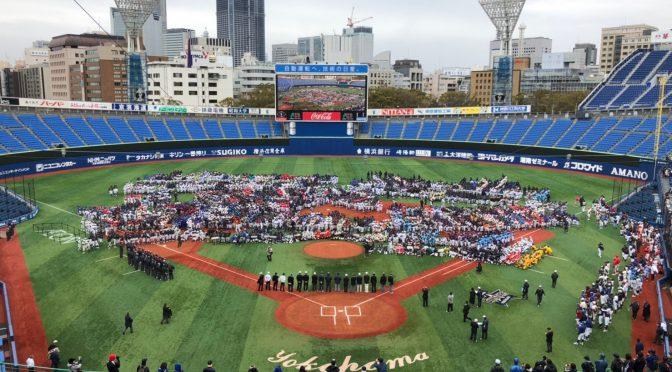 神奈川県少年野球フェスティバル(1,2年生)